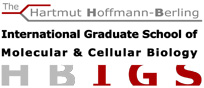 Molecular Biology best english programs undergraduate
