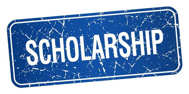 young leader scholarship