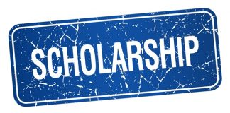 daimler and benz foundation scholarship in germany