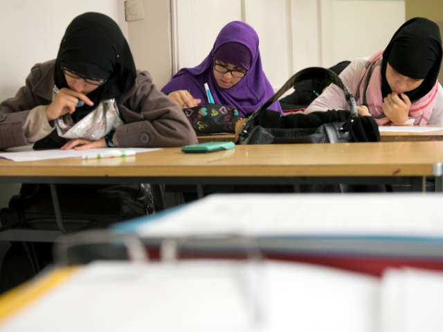 Germany Will Lower Educational Standards For Benefit Of Migrants And Equal Opportunities