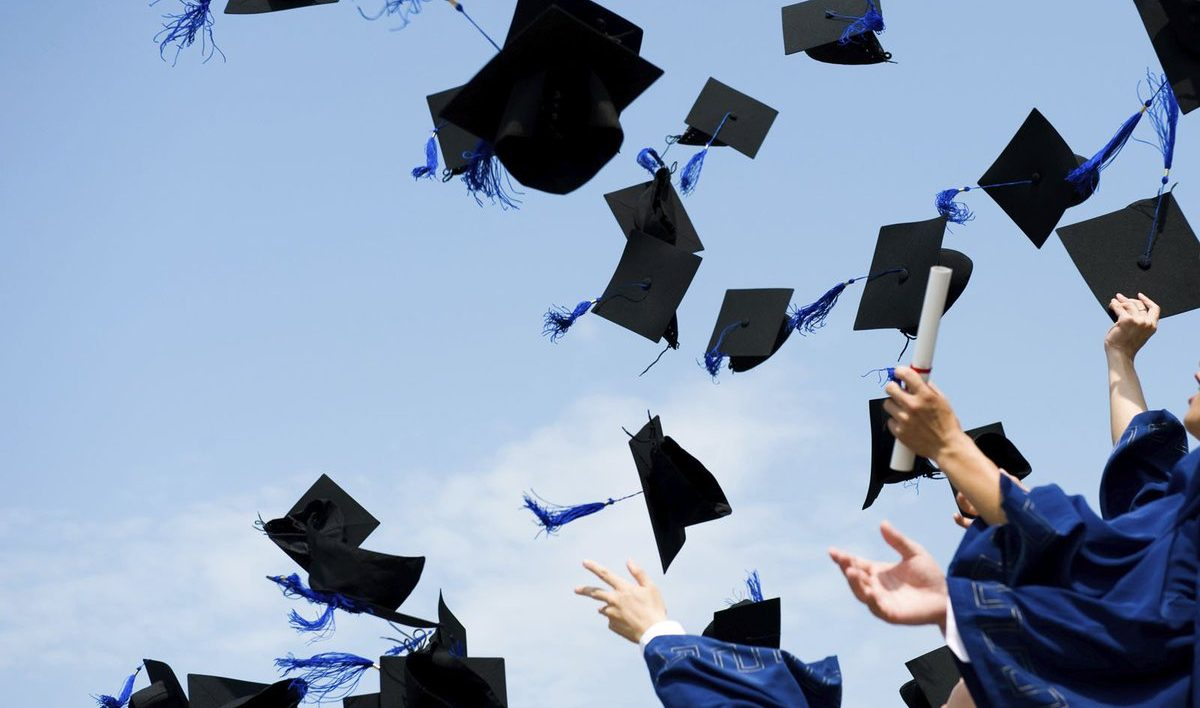 Highest Paying Degrees in Germany - Study in Germany for Free